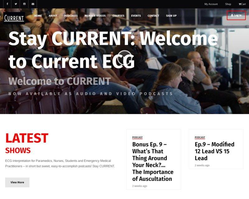 screenshot of a subscription wordpress website